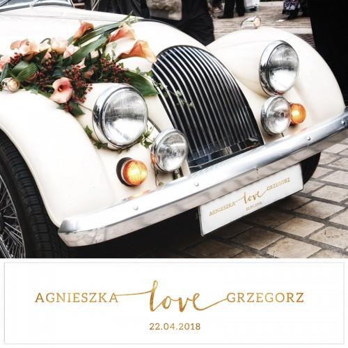 TABLICE rejestracyjne ślub Z NADRUKIEM Kolekcja Love