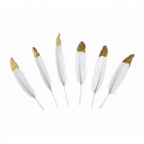 PIÓRKA dekoracyjne białe ze złotym brzegiem 6szt