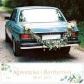 TABLICE rejestracyjne ślub Z NADRUKIEM Gałązka Eukaliptusa