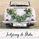 TABLICE rejestracyjne ślub Kropeczki RÓŻNE WZORY